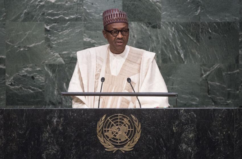 Buhari Signed Instrument of Ratification