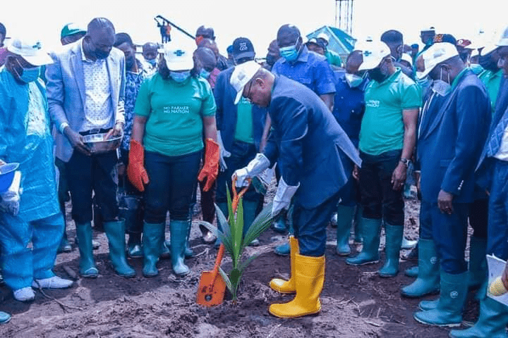 Gov.Emmanuel seeks federal government's financial support for commercial cultivation of coconuts